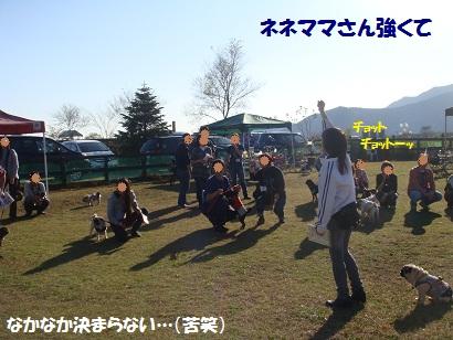 DSC05672_20120503161613.jpg