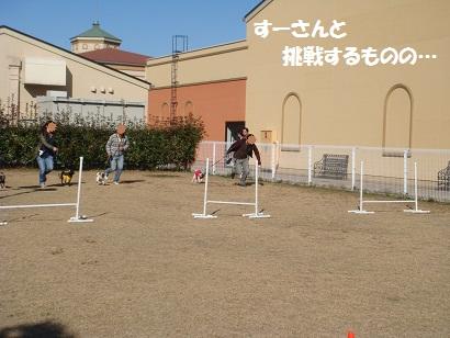 DSC05781_20120511030919.jpg