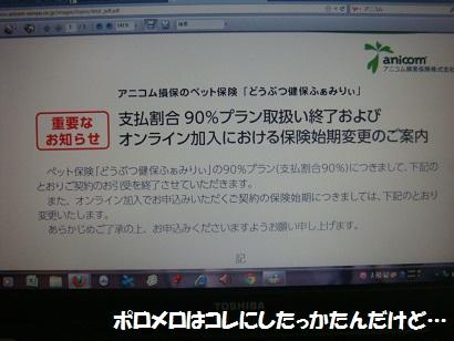 DSC05826_20120412031045.jpg