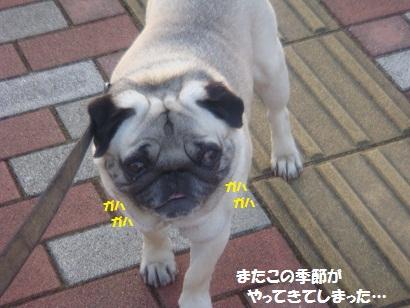 DSC05840.jpg