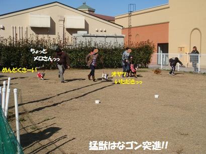 DSC05893.jpg