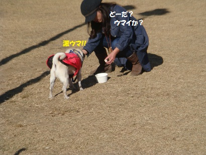 DSC05930_20120511013642.jpg