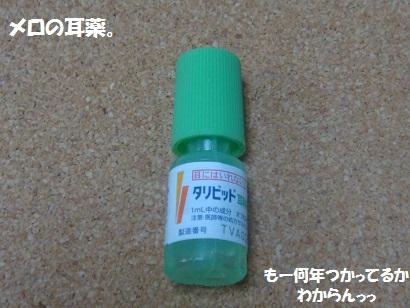 DSC05959_20120412214457.jpg