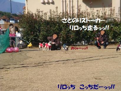 DSC05975_20120511004309.jpg