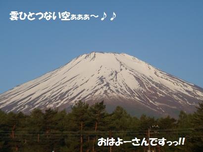 DSC06021.jpg
