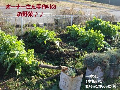 DSC06047_20120505162019.jpg