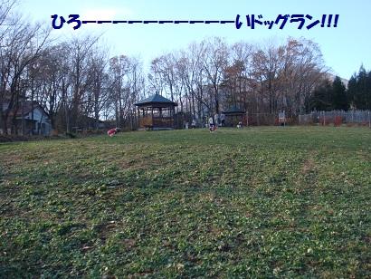 DSC06051_20120505164706.jpg