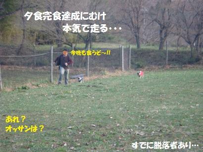 DSC06088_20120506022742.jpg