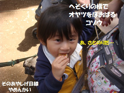 DSC06154_20111125233441.jpg