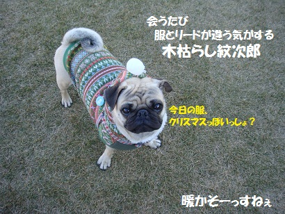 DSC06940_20120601024410.jpg