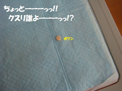 DSC07014_20120117041626.jpg