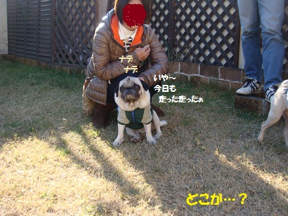 DSC07146_20120608070920.jpg