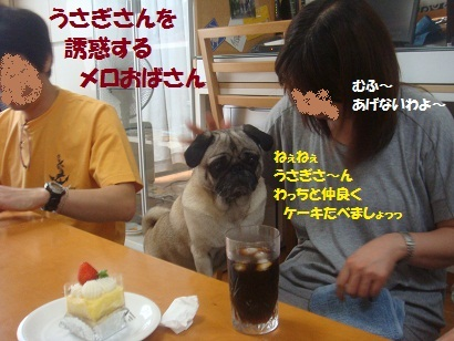 DSC07149_20120216202538.jpg