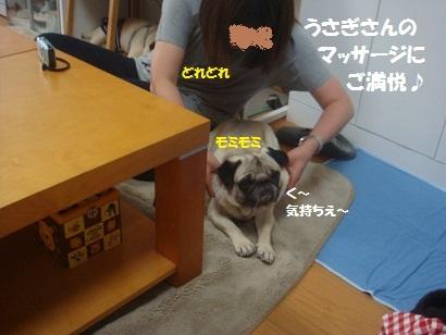 DSC07215_20120216202537.jpg