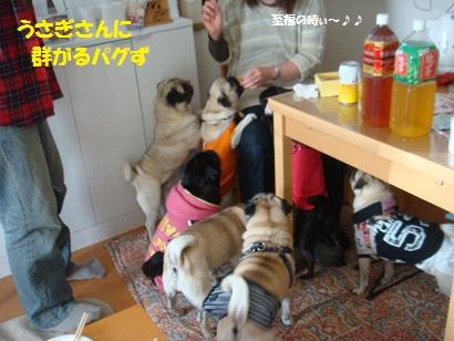 DSC07358_20120608201558.jpg