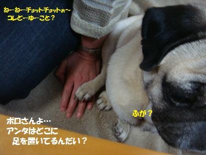 DSC07439.jpg