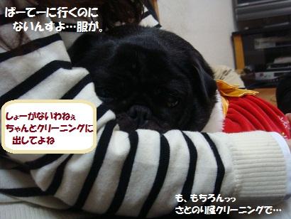 DSC07447.jpg