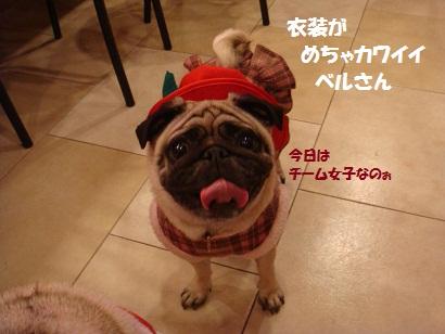 DSC07607_20120614044530.jpg