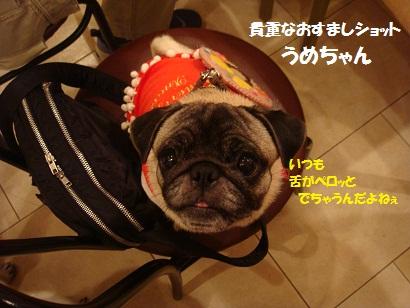 DSC07675_20120614190546.jpg