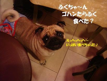 DSC07680_20120614051906.jpg