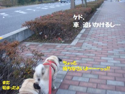 DSC07743.jpg