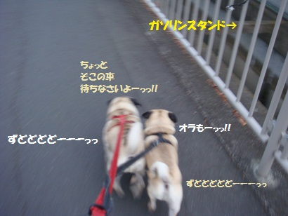 DSC07750_20111225221326.jpg