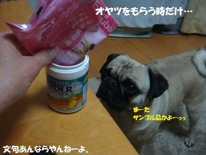 DSC07797_20120508042819.jpg
