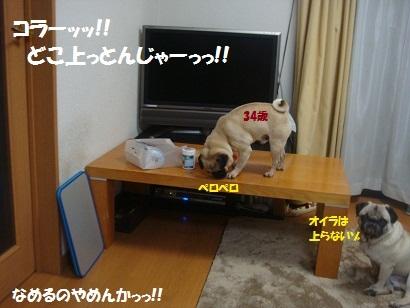DSC07812_20120508042821.jpg