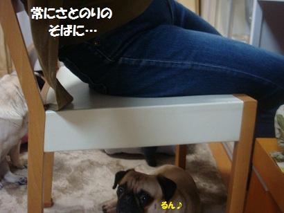 DSC07834_20120508044936.jpg