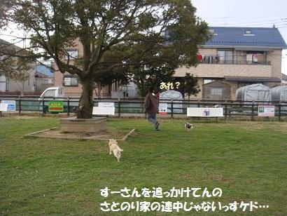 DSC07968_20120619200924.jpg