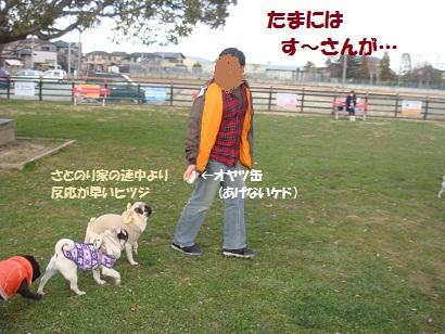 DSC07969_20120619200925.jpg