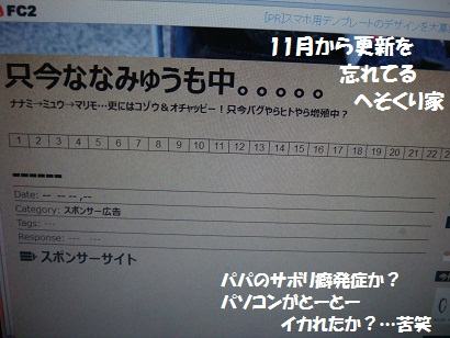 DSC08011.jpg