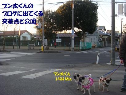 DSC08315.jpg