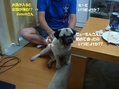 DSC08339_20120108003213.jpg