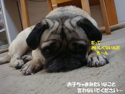 DSC08450_20120117044047.jpg