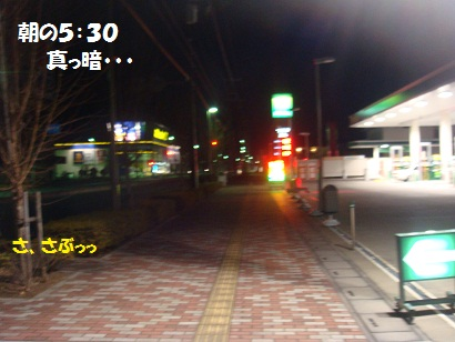 DSC08475_20120106044847.jpg