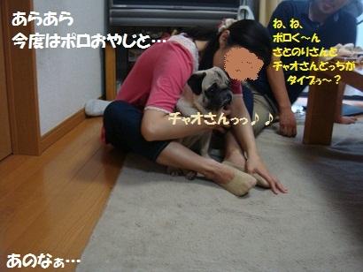 DSC08561_20120216194101.jpg