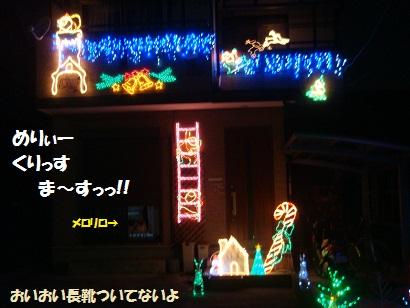 DSC08784_20111105163851.jpg
