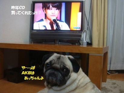 DSC09415_20120612200134.jpg