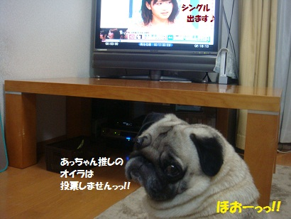 DSC09429_20120612200132.jpg