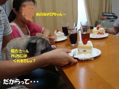 DSC09503_20120216192257.jpg
