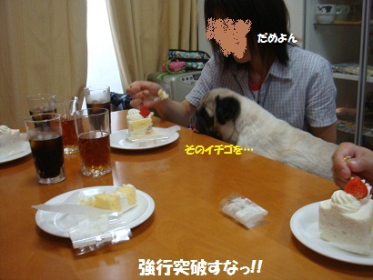DSC09506_20120216192257.jpg