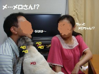 DSC09547_20120216192256.jpg