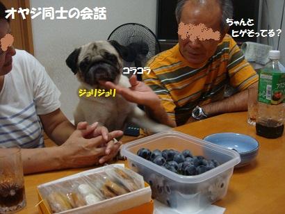 DSC09808_20120201213314.jpg