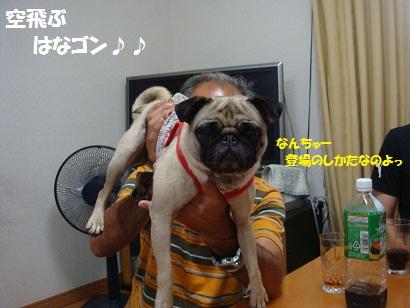 DSC09811_20120201195244.jpg