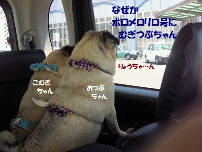NEC_0001_20120106051155.jpg