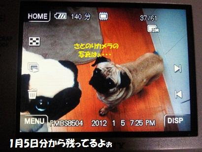NEC_0004_20120131235216.jpg