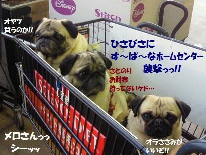 NEC_0022_20120314012622.jpg