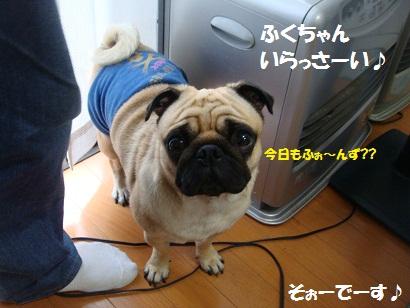 PMBS1452.jpg