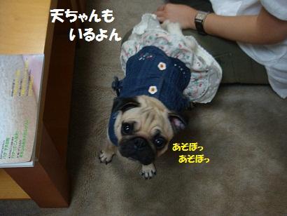PMBS1479.jpg